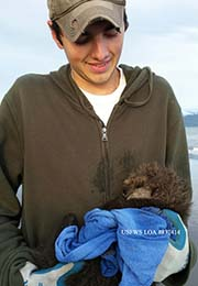 Intern hold sea otter pup bundled in towel.