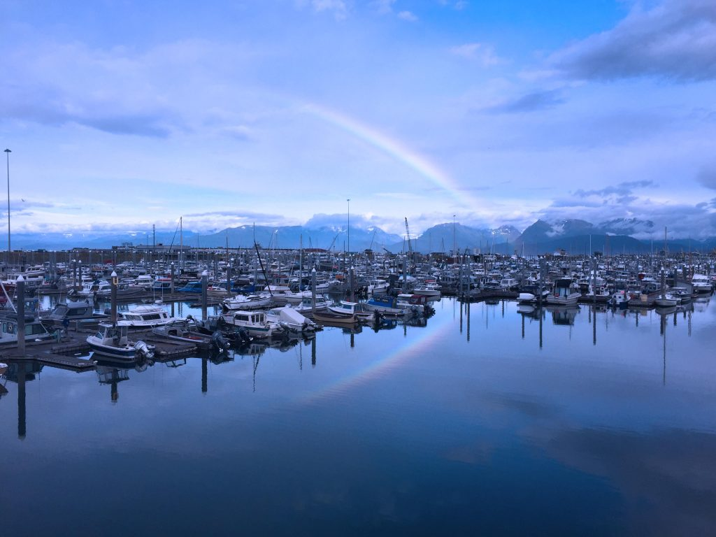 A beautiful morning in the Homer Boat Harbor