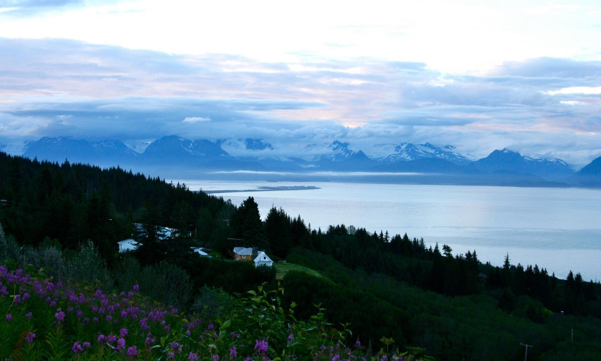 The Homer spit peaking out from flower covered hill