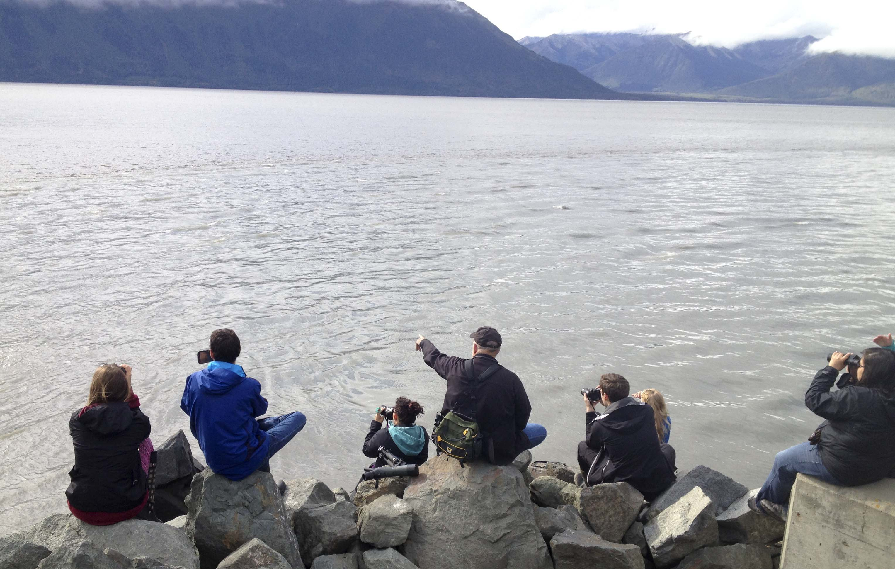 Instructor points to something in the water as students point cameras